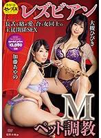 M寵調教蕾絲邊幹砲 大槻響 加藤綾野