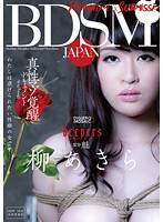 BDSM JAPAN 愛被虐待M女覺醒 柳晶