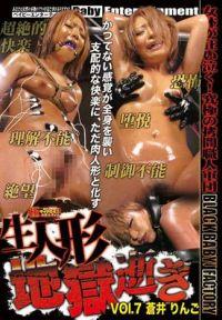 洋娃娃高潮地獄 Vol.7 蒼井林檎