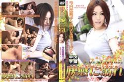 熟女檔案#01 富永廣美